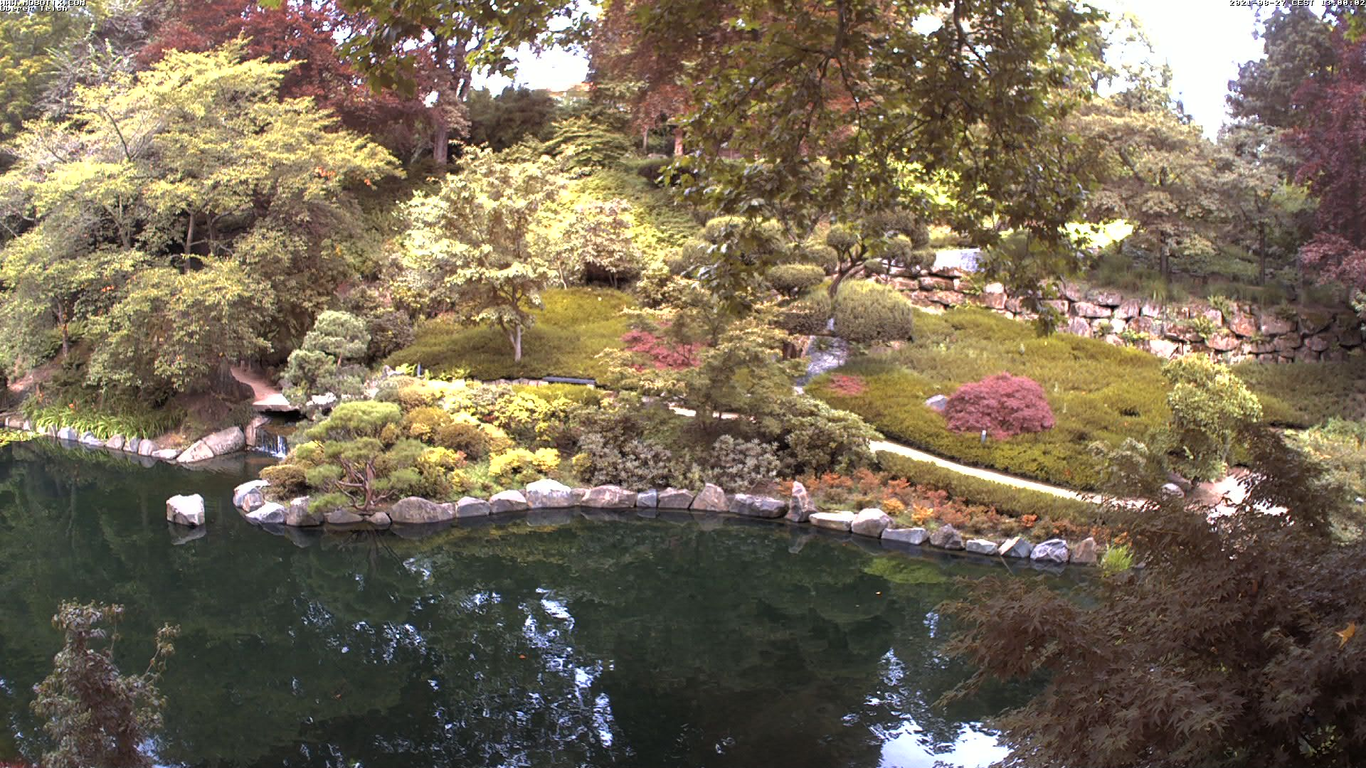 Japanese Garden Webcam 1