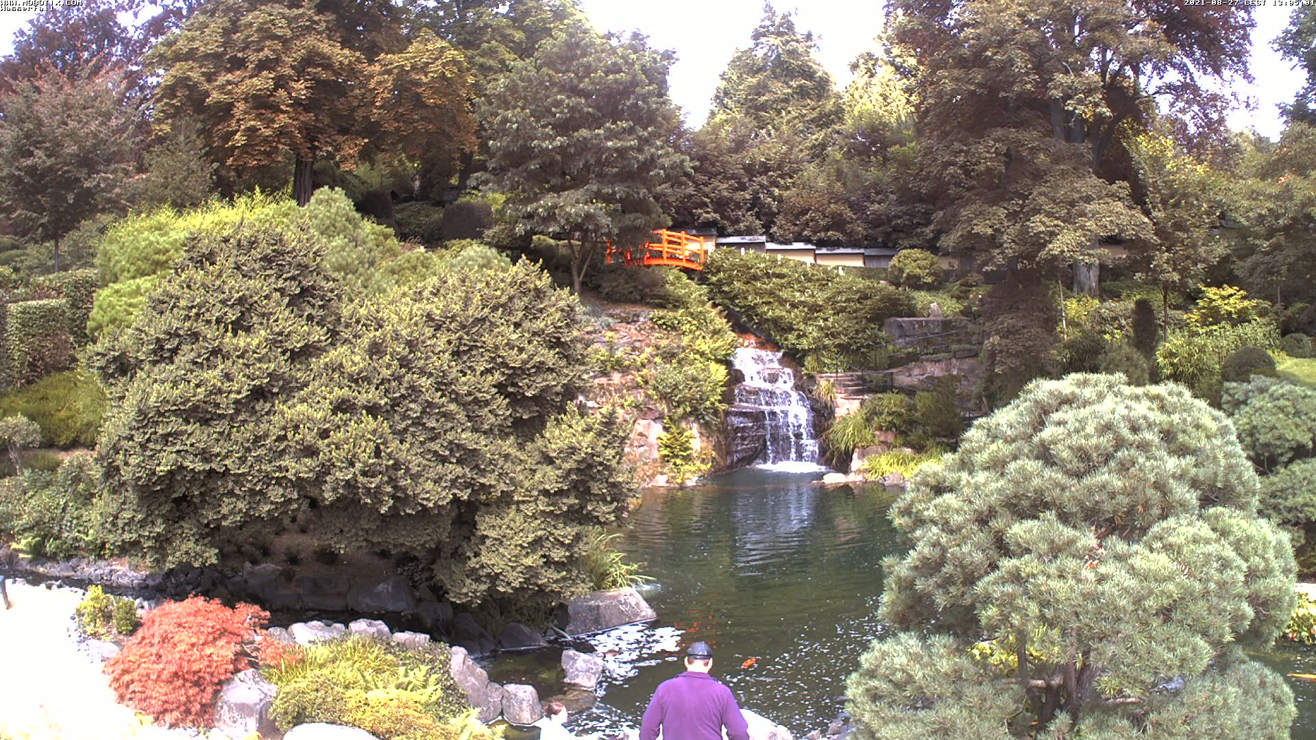Japanese Garden Webcam 3