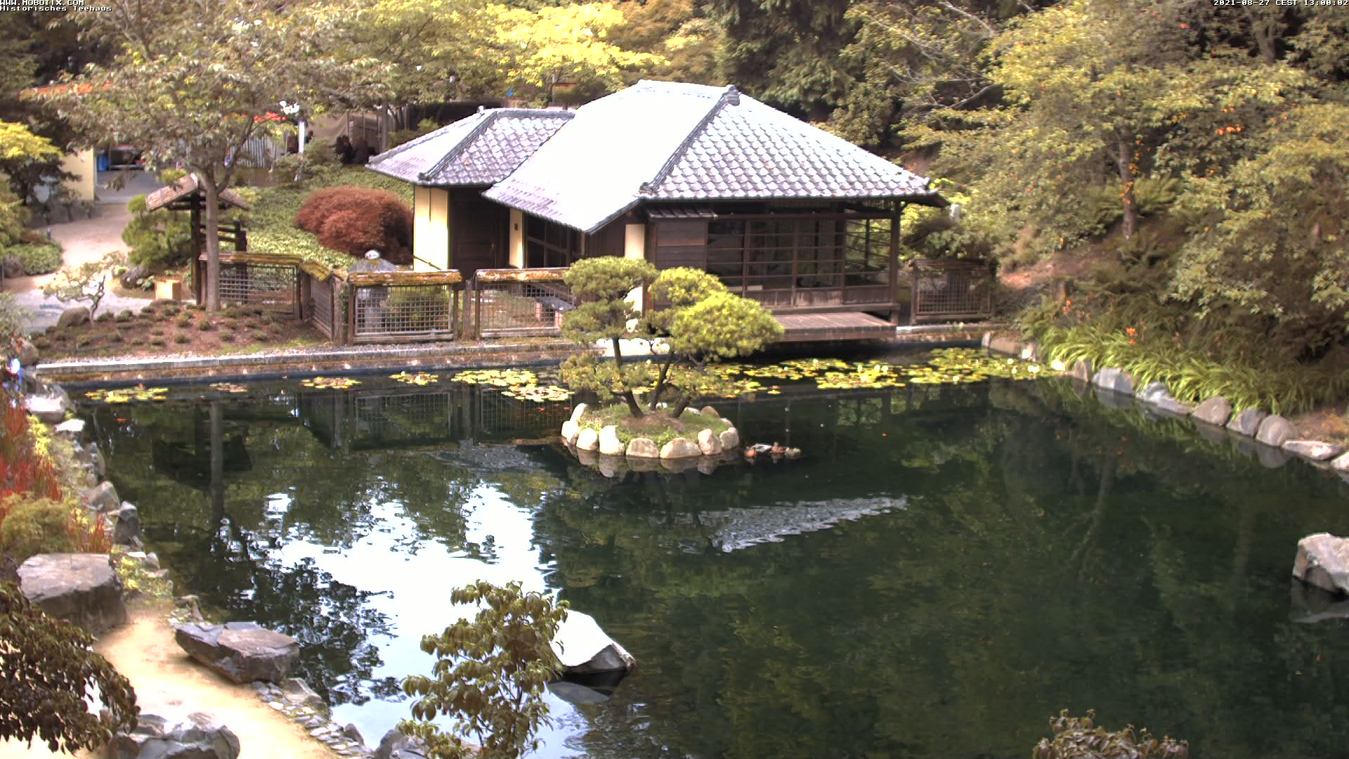 Japanese Garden Webcam 4