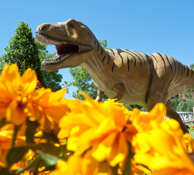 Dinosaur at the Garden Fair. In the front you could see yellow flowers.