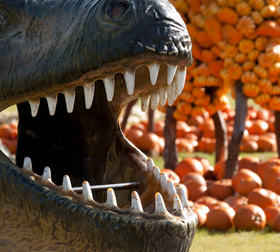 Mouth of a dinsosaur at the Garden Fair. In the background you could see a lot of pumpkins.
