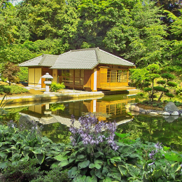 Teahouse at the Japanese Garden