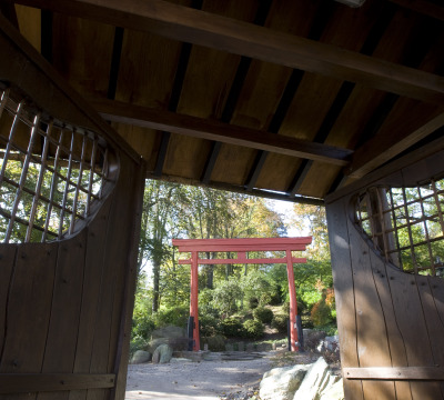 Shot out of the original Japanese Teahouse of the japanese Garden