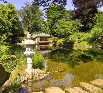 In the front you could see the koi carp pond and in the background the original Japanese Teahouse of the Japanese Garden