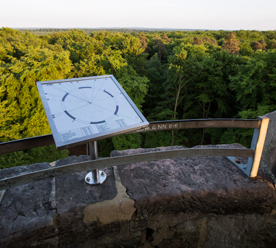 View from the Humberg Tower to the forest
